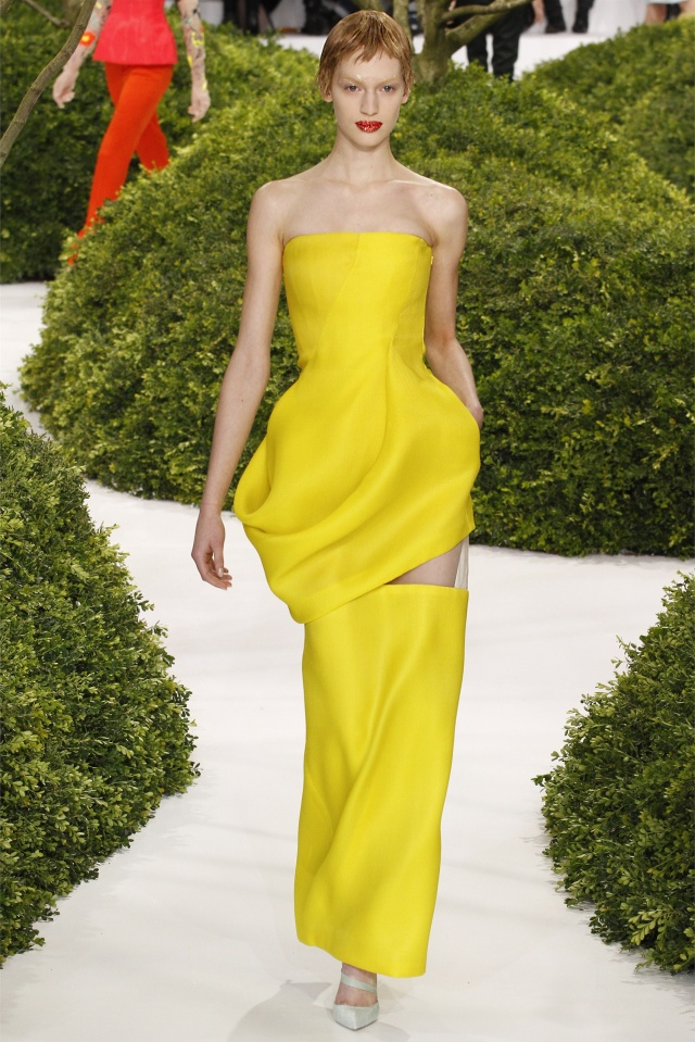 haute-couture-spring-summer-2013-Christian-dior-6