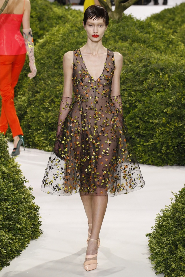 haute-couture-spring-summer-2013-Christian-dior-9