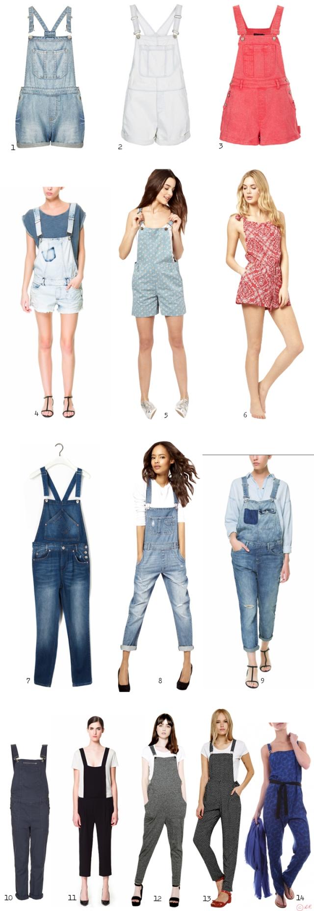 apprivoisement-fashion-inspiration-tumblr-salopette-2