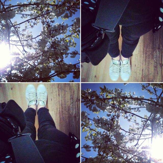 percy-blog-anniversaire-flower-stan-smith