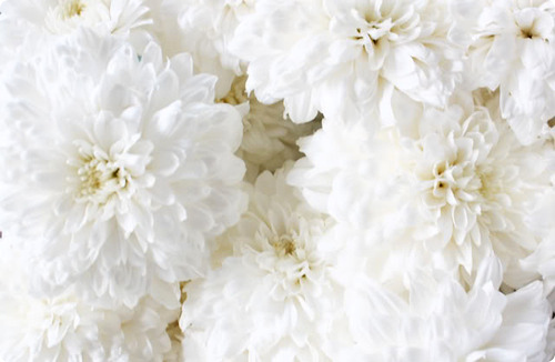 inspiration-blanc-12