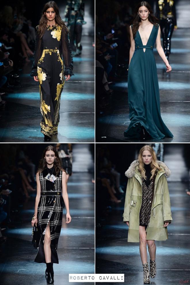fashion-week-autumn-winter-2015-Milan-Roberto-Cavalli