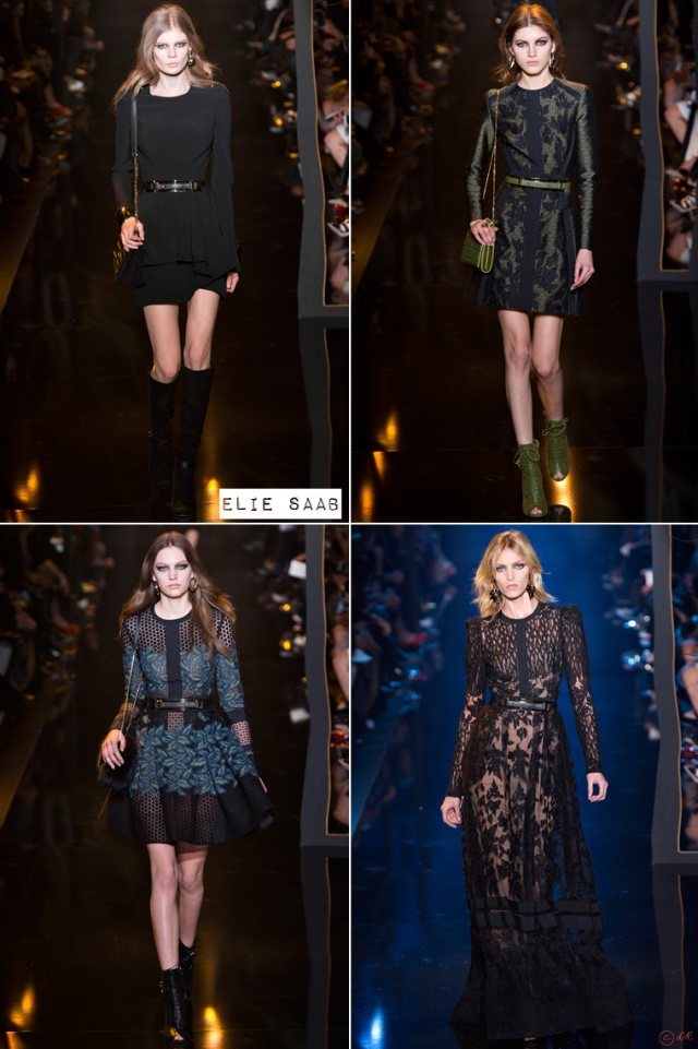 Paris-Fashion-Week-Ready-to-Wear-Fall-Winter-2015-2016-Elie-Saab